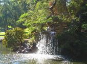 Point Defiance Waterfall