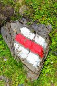 White Red Hiking Trail Mark Painted On A Rock In Nature. The Tourist Signs Help For Orientation On H poster