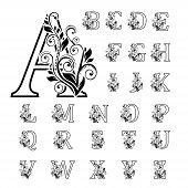 Elegant Alphabet With Florals Bouquet. Initials Letters With Botanical Elements. Monogram Arrangemen poster