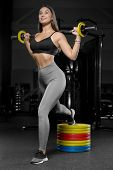 Pretty Caucasian Fitness Woman Pumping Up Muscles Workout Fitness And Bodybuilding Concept Gym. poster