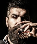Bearded Drink Cognac. Sommelier Tastes Drink. Man Holding A Glass Of Whisky. Closeup Portrait. Sippi poster