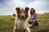 Woman With Scotch Collie Dog In Meadow. Woman Sitting With Scotch Collie Dog In Nature. Close Up Of  poster