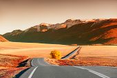 Beautiful Road In The Autumn Mountains At Sunset. Chuysky Tract In Altai Republic, Siberia, Russia.  poster