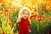 Child Shows A Finger On Something Ahead. A Beautiful Boy In A Poppy Field Is Happy And Shows Happy E poster