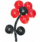 foto of licorice  - Flower made of liquorice spiral candies on white background - JPG