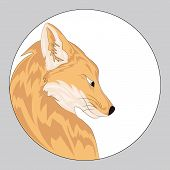 Stylized Portrait Of A Fox. Head Of A Fox. Wild Animal. Predator. A Foxs Profile Inscribed In A Circ poster