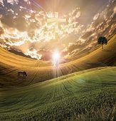 Cross radiates light in sky over beautiful landscape along with figure of light