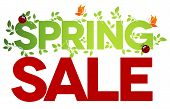 Spring sale isolated on white