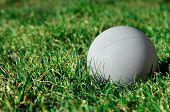Lacrosse Ball On Grass