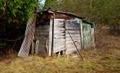 stock photo of shacks  - Delapidated old farm shack in a field - JPG
