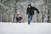 stock photo of toboggan  - In the winter forest - JPG