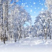 Winter Scenery, Snowstorm