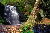 Bushkill Waterfall