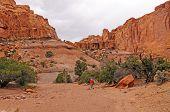 Hiking Into A Desert Canyon