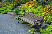 Wooden Garden Bench In Summer Garden