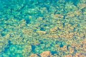Crystal Clear Waters And Rocky Bottom