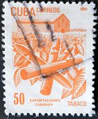 Cuba - Circa 1982: A Stamp Printed In Cuba Shows The Tobacco, Circa 1982