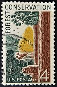 United States Of America - Circa 1958 : A Stamp Printed In The Usa Shows Forest Conservation