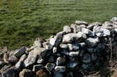 Old Irish Stone Wall