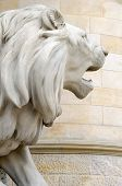 Statue Of A Lion, A New Town Hall Of Hanover, Germany