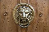 Doorknob Lion