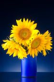 Bouquet Of Sunflowers In A Blue Vase