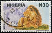 A stamp printed in Nigeria shows Lion Panthera leo