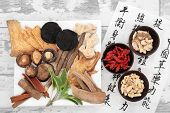 Chinese herbal medicine selection and mandarin calligraphy script on rice paper describing the medic