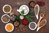 foto of pagan  - Herbal medicine selection also used in pagan witches magical potions - JPG