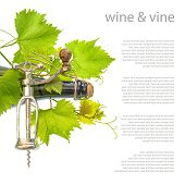Bottle Of Wine With Corkscrew And Fresh Green Vine Leaves