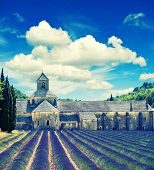 Senanque Abbey With Lavender Field, Landmark Of Provence, Vaucluse