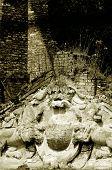 Old Castle Lions
