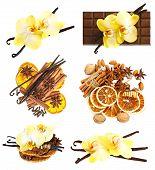 Vanilla Pods With Orchid Flower, Cinnamon Sticks, Anise Stars