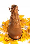 Brown Female Boots On A Background Of Golden Autumn Leaves