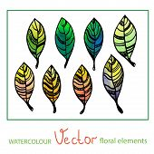 Set of vector watercolor stylized leaves