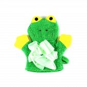 Frog Knitted Glove On White Background