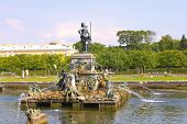 The Fountain Of Neptune In The Upper Garden In Peterhof, Russia