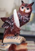 Owl - Symbol Of Knowledge And Science