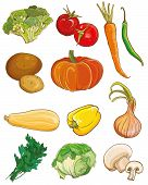 Vector Vegetables Set. Food Ingredients