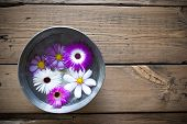 Silver Bowl On Wooden Background With Cosmea Blossoms