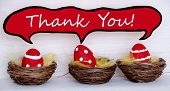 Three Red Easter Eggs With Comic Speech Balloon With Thank You