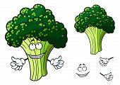 Happy fresh cartoon broccoli giving a thumbs up