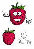 Cute happy smiling cartoon raspberry fruit