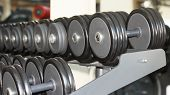 stock photo of barbell  - Row of barbells or dumbbells in the gym - JPG