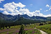 View Of The Most Beautiful Valley In The Polish Tatras