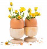 Two Eggs In A Wooden Stands With Yellow Flowers
