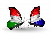 Two Butterflies With Flags On Wings As Symbol Of Relations Hungary And Holland