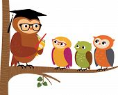 pic of owls  - Stock Vector cartoon illustration Owl teacher and his students - JPG