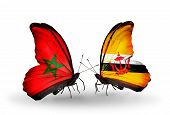 Two Butterflies With Flags On Wings As Symbol Of Relations Morocco And Brunei