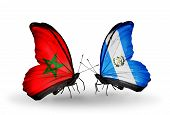 Two Butterflies With Flags On Wings As Symbol Of Relations Morocco And Guatemala